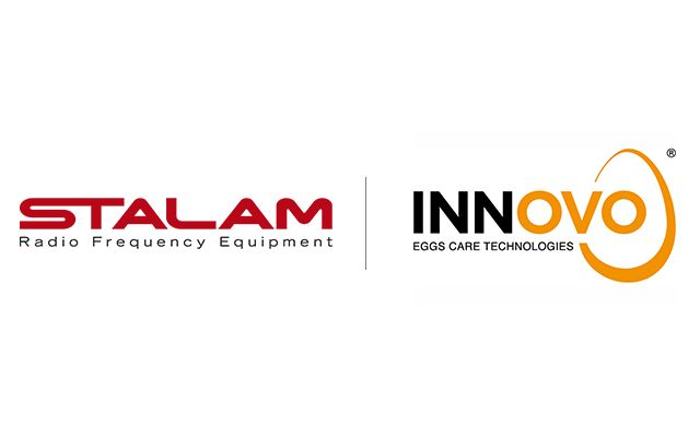 Innovo Solutions and Stalam strategic partnership